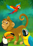 Cartoon jungle - safari - illustration for the children Stock Photos