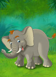 Cartoon jungle - safari - illustration for the children Royalty Free Stock Images