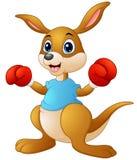 Cartoon kangaroo boxing Stock Photography