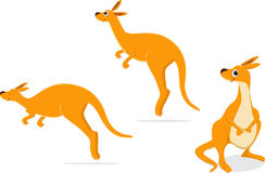 Cartoon kangaroo collection set. illustration royalty free illustration