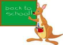 Cartoon Kangaroo near chalkboard Stock Image