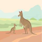 Cartoon kangaroo vector illustration Stock Image