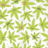 Cartoon kawaii weed seamless vector pattern white Stock Photos