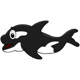 Cartoon killer whale Royalty Free Stock Photography
