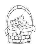 Cartoon kitten in a basket, vector illustration Royalty Free Stock Photography