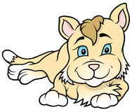 Cartoon Kitten Laying Stock Photo
