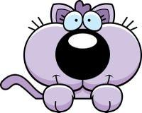 Cartoon Kitten Peeking Stock Images