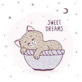 Cartoon kitten sleeping Royalty Free Stock Photos
