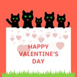 Cartoon kittens hiding behind paper. Happy Valentines day greeting card. Vector illustration Royalty Free Stock Photos