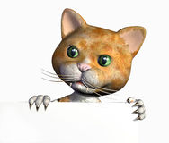 Cartoon Kitty with Edge of Blank Sign - with clipping path Stock Photos