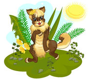 Cartoon kitty in the meadow Stock Photo