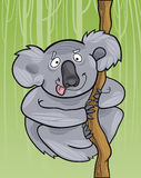 Cartoon koala Royalty Free Stock Photo
