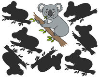 Cartoon koala. Find the right shadow image. Educational games for kids.Vector stock illustration Royalty Free Stock Photography