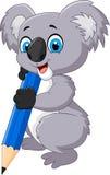 Cartoon koala holding pencil Stock Image