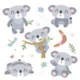 Cartoon koala set Stock Photography