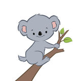 Cartoon Koala. Vector illustration of a cute smiling koala on a branch Royalty Free Stock Images