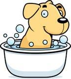 Cartoon Labrador Bath Royalty Free Stock Images