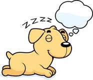 Cartoon Labrador Dreaming Stock Image