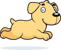 Cartoon Labrador Running Stock Image