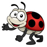 Cartoon Lady bug Royalty Free Stock Image