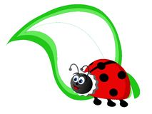 Cartoon ladybird Royalty Free Stock Photo