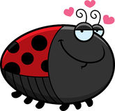 Cartoon Ladybug in Love Stock Images