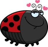 Cartoon Ladybug in Love Stock Images