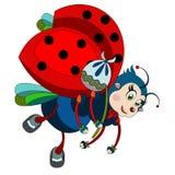 Cartoon ladybug on a white background. Flying ladybug on a white background Stock Images