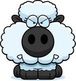 Cartoon Lamb Angry Stock Photos