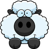 Cartoon Lamb Peeking Royalty Free Stock Photos