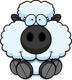 Cartoon Lamb Sitting Royalty Free Stock Images