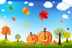 Cartoon Landscape With Pumpkins. Vector Royalty Free Stock Photos