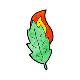 Cartoon leaf Stock Image