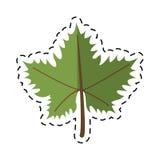 Cartoon leave grape wine symbol. Vector illustration eps 10 Royalty Free Stock Images