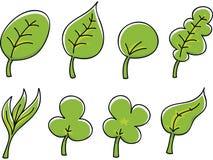 Cartoon Leaves Stock Image