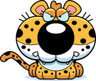 Cartoon Leopard Angry. A cartoon leopard cub with an angry expression stock illustration