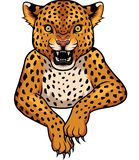 Cartoon Leopard mascot royalty free illustration