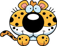 Cartoon Leopard Peeking Stock Photo