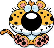 Cartoon Leopard Sitting Stock Photos