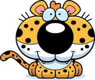 Cartoon Leopard Smiling Royalty Free Stock Image
