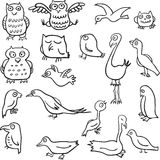 Cartoon line drawing birds Stock Photo