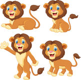 Cartoon lion collection set Royalty Free Stock Image