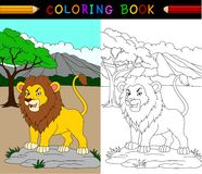 Cartoon lion coloring book Royalty Free Stock Image