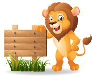 Cartoon lion with signboard Stock Photography