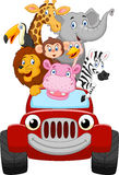 Cartoon little animal happy with red car Stock Image