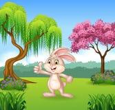 Cartoon little bunny giving thumb up Stock Photography