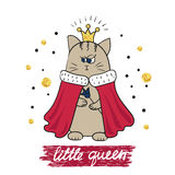 Cartoon little queen. Cute cat in royal gown Royalty Free Stock Photography