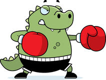 Cartoon Lizard Boxing Stock Images