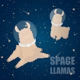 Cartoon llama. Cute lama. Alpaca. Card on colorful background. Vector royalty free illustration