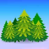 Cartoon, lots of green Christmas trees, a forest in winter.  Royalty Free Stock Images